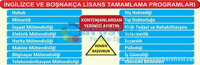 lisans